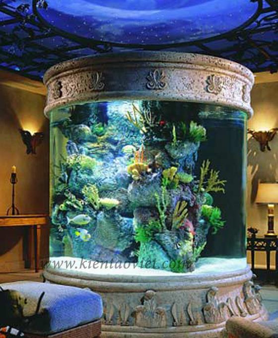 Mẫu bể cá cho nhà đẹp - 13