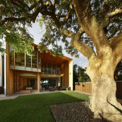 Những thiết kế nội thất đẹp nhà ốp gỗ. Ảnh 01