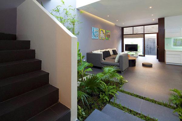 Thiết kế nội thất đẹp kết hợp không gian xanh. Ảnh 05